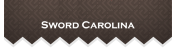Sword Carolina – The First and Only HEMA School in the Upstate